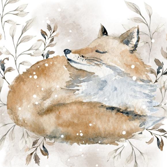 foxandclothco